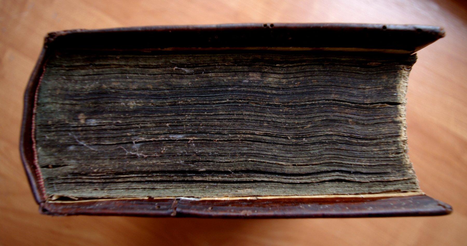 Псалтирь 19 века после реставрации. Общий вид.